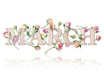 Wooden inscription March with branches of roses, isolated on white background stock image