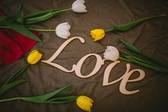 The wooden inscription and yellow tulips. The wooden inscription love lies on a bed among white and yellow tulips Stock Image