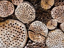 Insect hotel. Wooden insect hotel for different types of insects Royalty Free Stock Photography