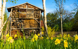 Wooden insect house- bug hotel Stock Photography
