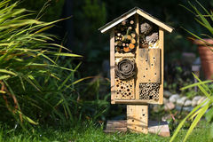Wooden Insect House Garden Decorative Bug Hotel and Ladybird and Royalty Free Stock Photography