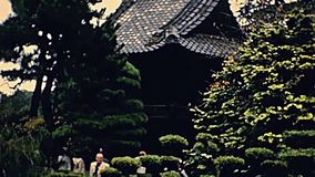 San Francisco Japanese bridge. Wooden Japanese bridge of San Francisco Japanese Tea Garden, zen temple in Golden Gate Park. Archival footage in 1980s. California stock video footage