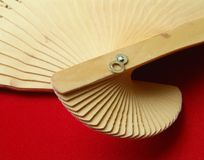 Wooden japanese fan. S tail placed on red velvet cloth Stock Photo
