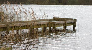 The wooden jetty. A wooden jetty on a lake with reeds and grasses in the foreground Stock Image