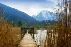 Wooden jetty with gate in the tegernsee lake, snow-covered mount Stock Photos