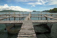 Wooden jetty in the sea. With beautiful sky background Royalty Free Stock Photography