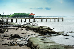 Wooden Jetty Stock Image