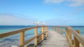 Wooden jetty into turquoise, green Indian Ocean royalty free stock photography