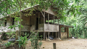 Wooden jungle home royalty free stock photos