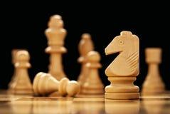 Wooden knight chess piece Stock Photos