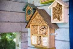 Wooden lacewig house for bees Stock Photos