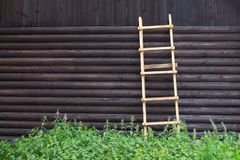 Wooden ladder against the wall of the log house with wood texture and knots on the outside royalty free stock image