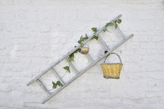 Wooden ladder with flowers and baskets against white painted bri Royalty Free Stock Photography
