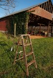 Wooden ladder on grass before barn. Ladder on grass in front of a barn stock image