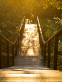 Wooden ladder shined with the sun Royalty Free Stock Photos