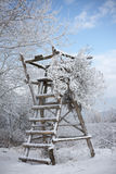 Wooden Ladder and Stand in the Snow. Wooden lookout stand built in a remote area, covered in snow. Vertical shot Stock Photos