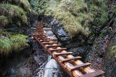 Wooden ladders above gorges in Slovak Paradise tourist destination.  Stock Photos
