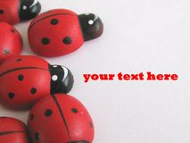 Wooden ladybird Royalty Free Stock Images