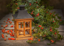 Wooden lantern and rosehips Royalty Free Stock Photography