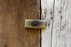 Wooden latch on a wooden door Royalty Free Stock Image