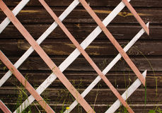 The wooden lattice Stock Images