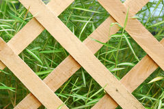 Wooden lattice Royalty Free Stock Photo