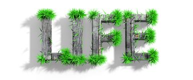 Wooden Life word with green grass Royalty Free Stock Photo