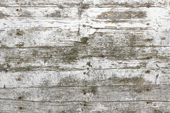 Wooden light planks Stock Image