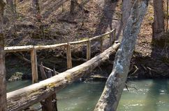 Wooden log bridge connecting hiking trail. Wooden log bridge connecting a hiking trail extending through a hardwood forest Stock Photo