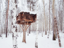 Wooden log house on a tree Stock Image