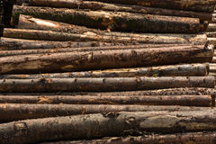 Wooden Log Pile Factory Side View Texture Background Bark Layin royalty free stock photo