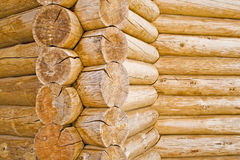 Wooden log texture Stock Images