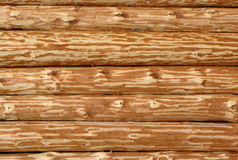 Wooden log wall Stock Photography