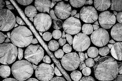 Wooden log wall black and white Stock Images