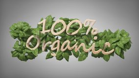 Wooden logo 100 % organic with leaves around 3d rendering. View of a Wooden logo 100 % organic with leaves around 3d rendering vector illustration