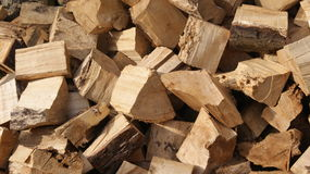 Wooden Logs. Freshly cut wooden logs in the summer sun royalty free stock photo