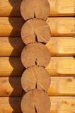 Wooden logs Royalty Free Stock Photo