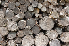 Wooden logs. Rural stacked wooden logs background Stock Image