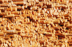 Wooden logs. A view of a large pile of wooden logs at a lumber mill or factory royalty free stock photo