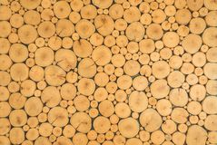 Wooden logs background. free space for text.  Royalty Free Stock Photo