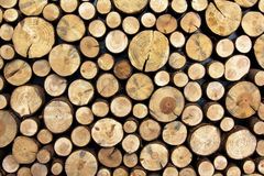 Wooden Logs Stock Photos
