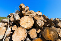 Wooden Logs on Blue Sky Stock Images