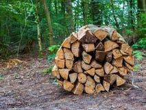 Wooden logs bundled Stock Images