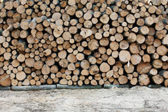 Wooden Logs with Forest on Background. Royalty Free Stock Photo