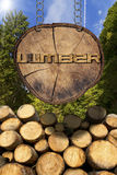 Wooden Logs with Forest and Lumber Sign. Trunks of trees cut and stacked and wooden sign, section of tree trunk with text lumber, hanging with metal chain. A Stock Image