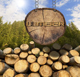 Wooden Logs with Forest and Lumber Sign. Trunks of trees cut and stacked and wooden sign, section of tree trunk with text lumber, hanging with metal chain. A Royalty Free Stock Photo