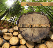 Wooden Logs with Forest and Lumber Sign. Trunks of trees cut and stacked and wooden sign with text lumber, hanging with metal chain on a wooden pole with green Royalty Free Stock Images