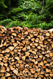 Wooden logs storage background Stock Photography