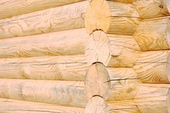 Wooden logs texture Stock Image
