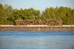 Wooden logs transported on boat Royalty Free Stock Photography